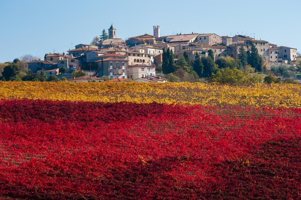 Territorio Torrita di Siena